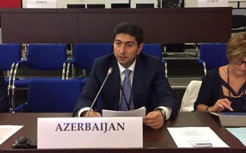 Milli Məclisin deputatı ATƏT PA-nın iclasında ermənilərin təxribatından danışıb