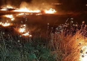 В горной местности Агсу начался пожар