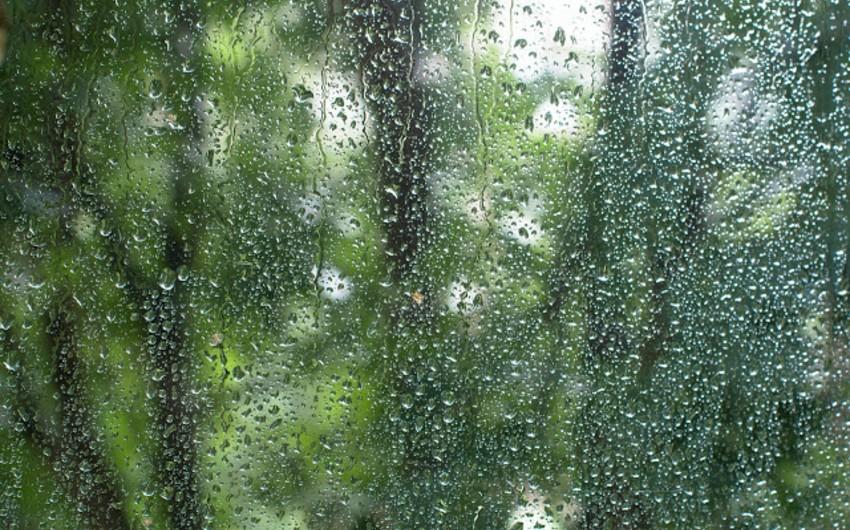Sabah Bakıda cənub-şərq küləyi əsəcək, rayonlarda yağış yağacaq