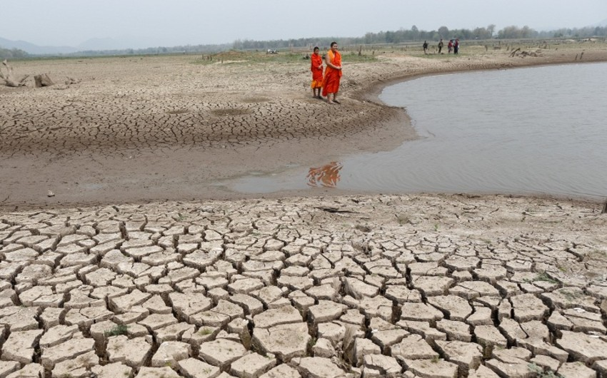 Red alert declared for heat wave in 5 Indian states