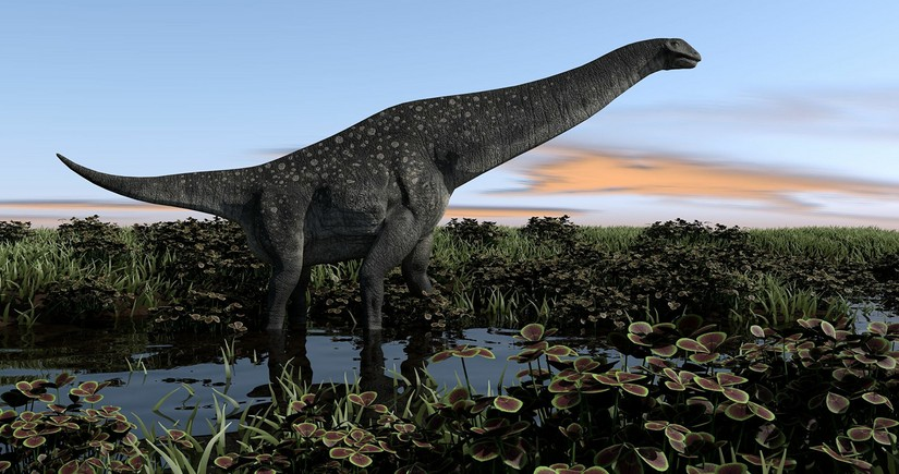 Argentine titanosaur could be the oldest ever found