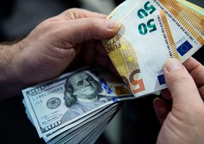 Euro tops dollar as payments currency for first time since 2013