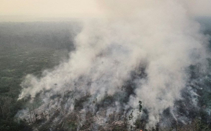 Braziliyada futbol matçı Amazon meşələrindəki yanğına görə dayandırılıb - VİDEO