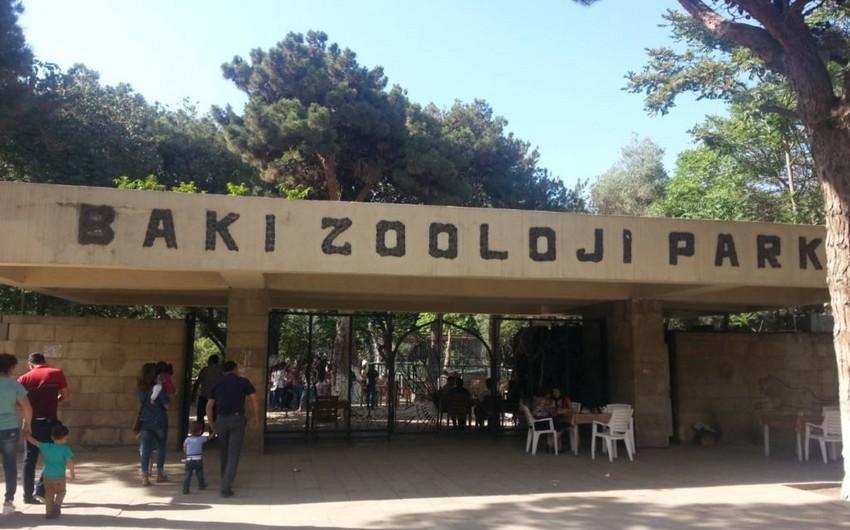 Bakı zooparkı 300 min manatlıq yem alır