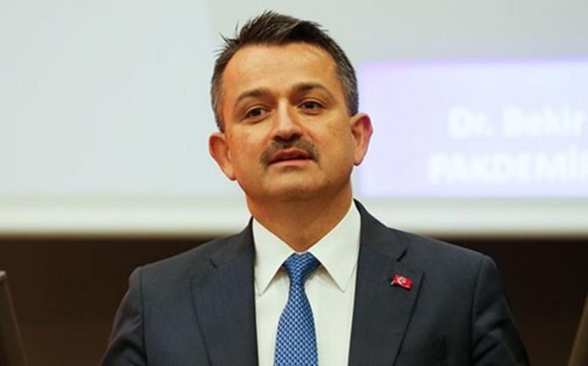 """Nazir: """"Azərbaycandan daha 362 nəfər yanğınsöndürən və 41 yanğınsöndürən maşın gəlib"""""""