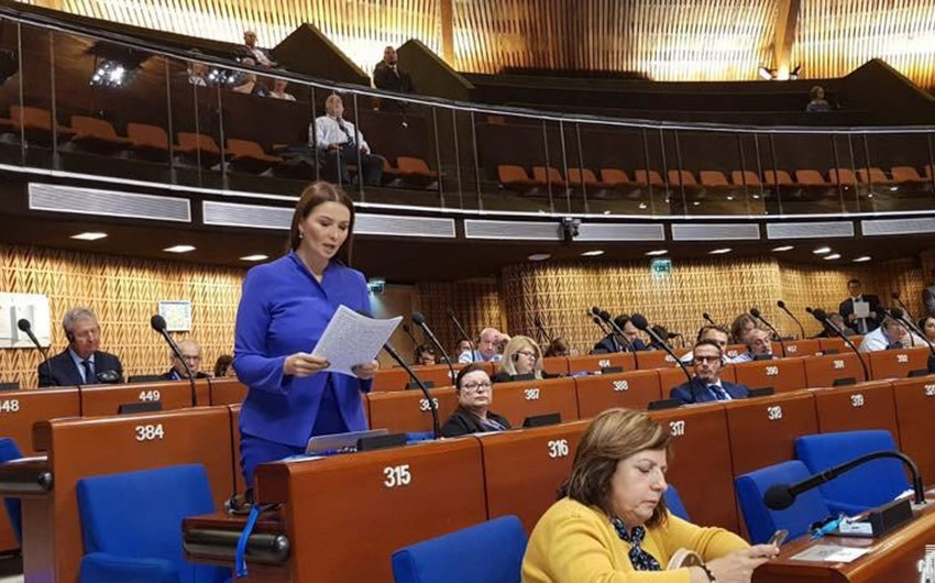 Qənirə Paşayeva AŞPA-da Türkiyəni müdafiə edib