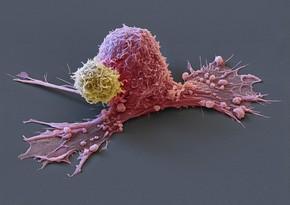 Раскрыты неожиданные симптомы опасного вида рака