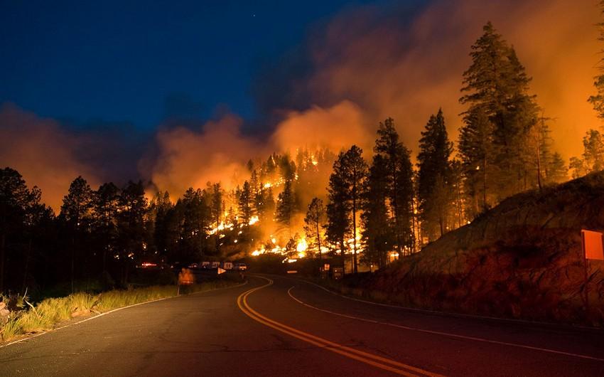 ABŞ-da meşə yanğınlarında azı 23 nəfər ölüb