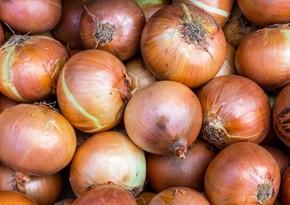 Araz Supermarketin 20 ton soğanı yararsız çıxdı
