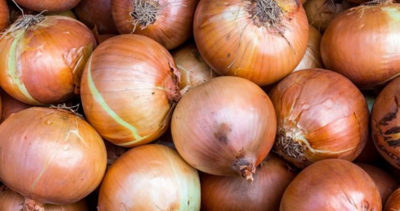 Araz Supermarketin 20 ton soğanı yararsız çıxdı - YENİLƏNİB