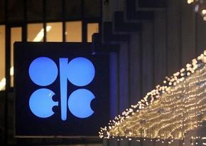 OPEC+ Nazirlər Monitorinq Komitəsinin gələn il ilk iclasının tarixi açıqlandı