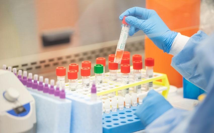 Azərbaycanda 53 mindən çox koronavirus testi aparılıb