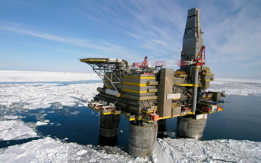 Neft-qaz şirkətləri Arktikadakı layihələrdən imtina edir