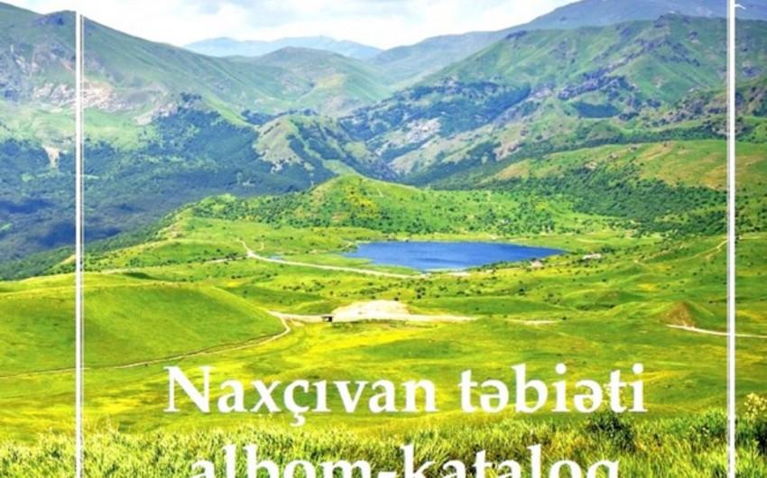 Naxçıvan ərazisinin 28 faizi xüsusi mühafizə olunan təbiət ərazilərinin payına düşür