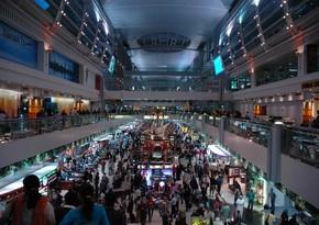 Аэропорт Дубая начал использовать собак для выявления коронавируса
