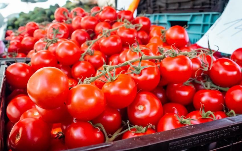Gürcüstan Azərbaycandan pomidor idxalını artırıb