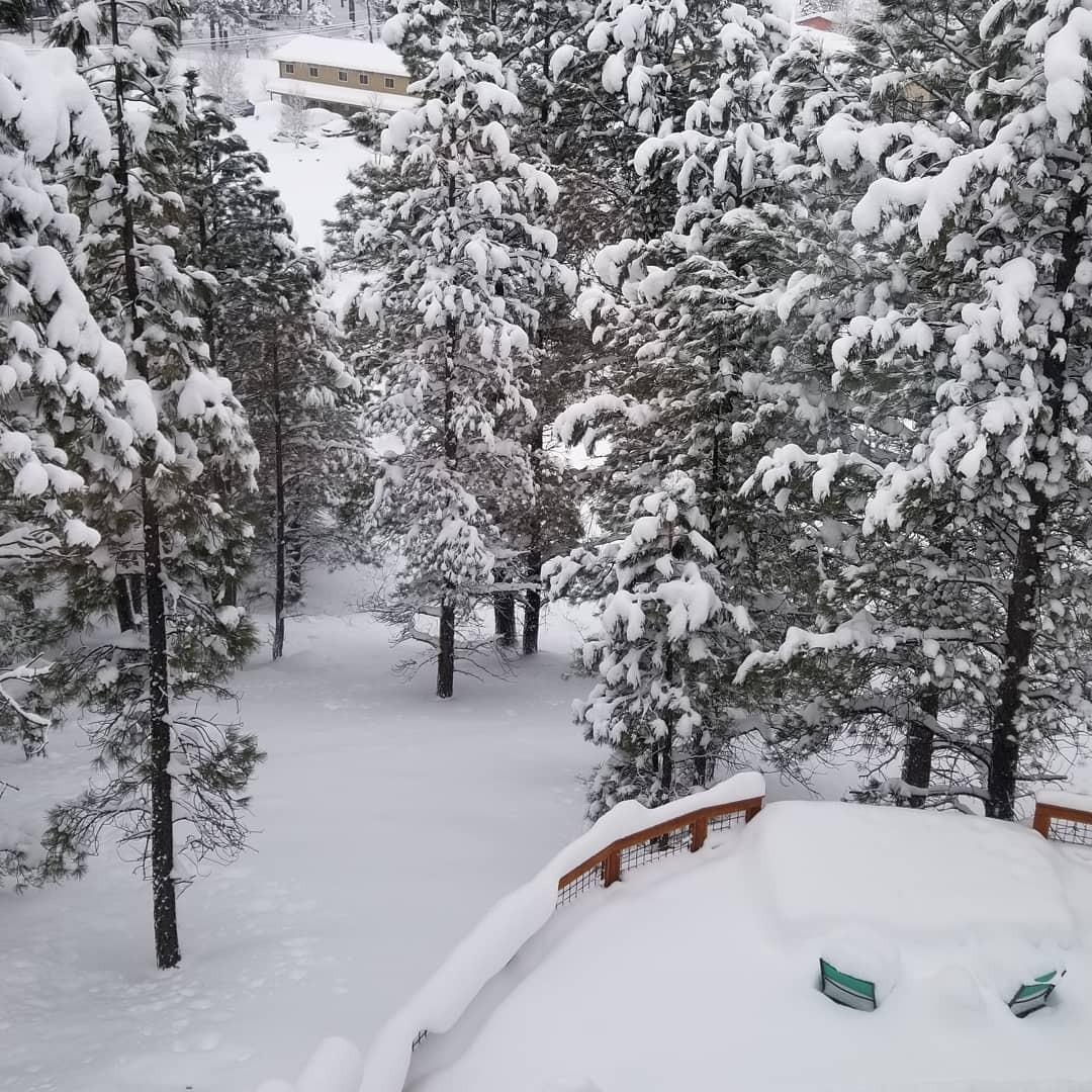 Самый сильный с 1915 года снегопад обрушился на город Флагстафф в штате Аризона - ВИДЕО