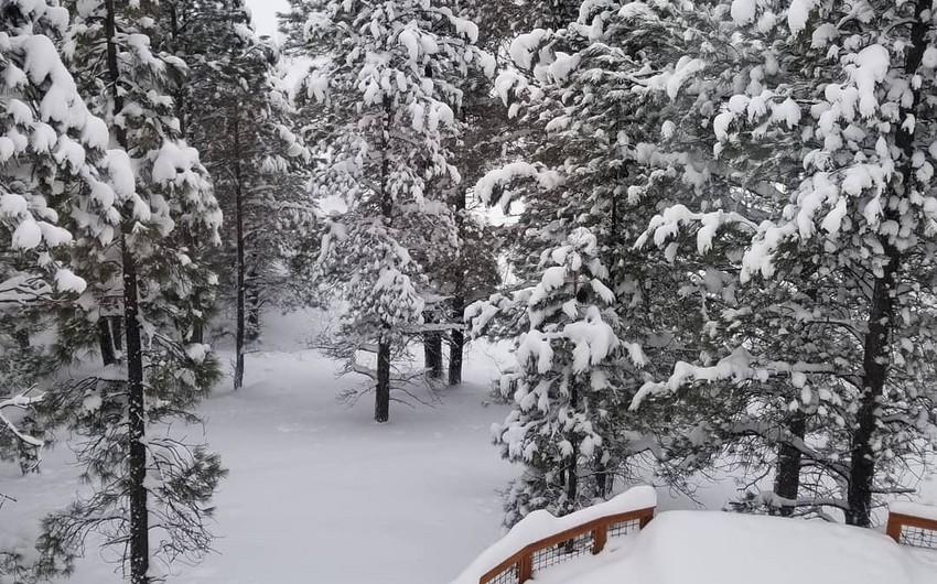 Arizona ştatında son 104 ilin ən güclü qar yağıntısı qeydə alınıb - VİDEO