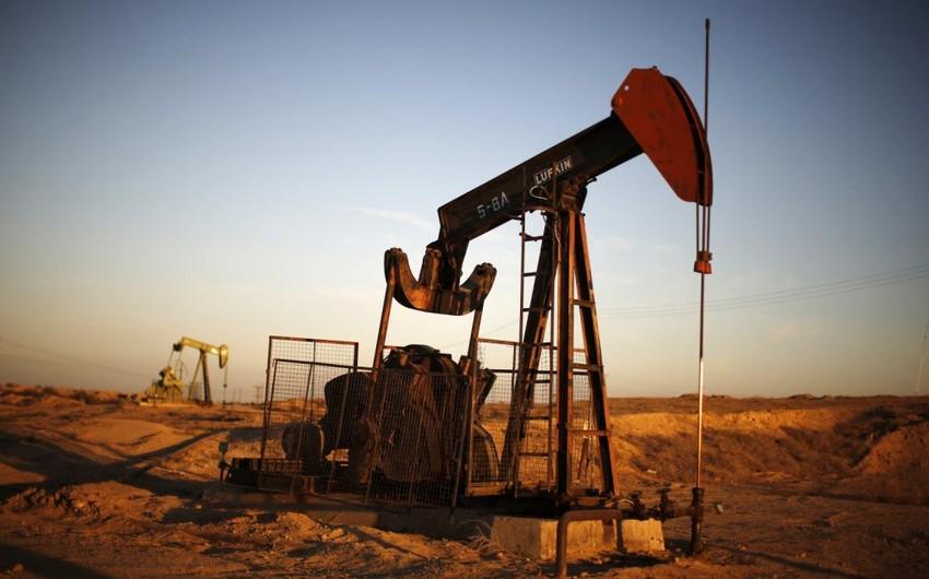 """""""Urals"""" nefti 16 ABŞ dollarına düşüb"""