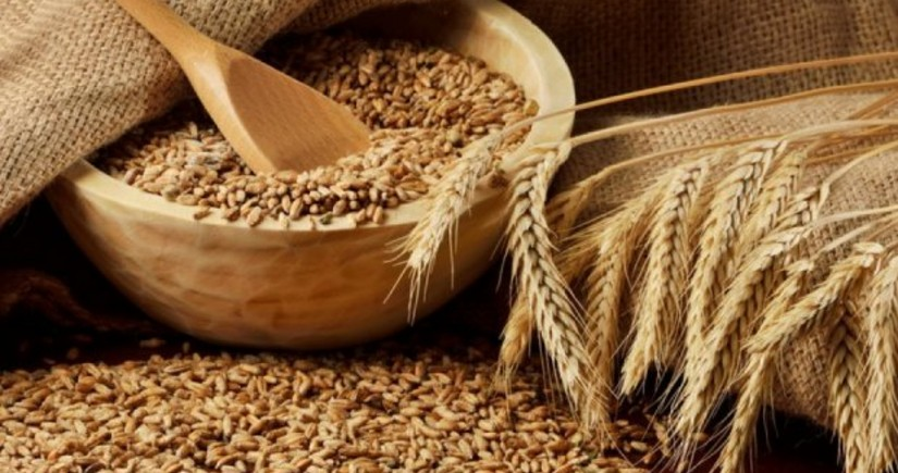 US raises forecast for Azerbaijan's grain imports