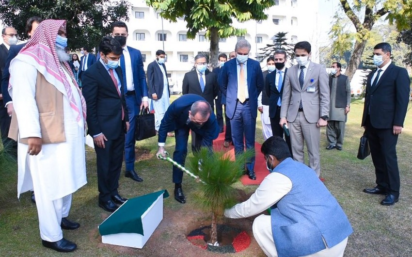 Jeyhun Bayramov plants tree in yard of Pakistani MFA