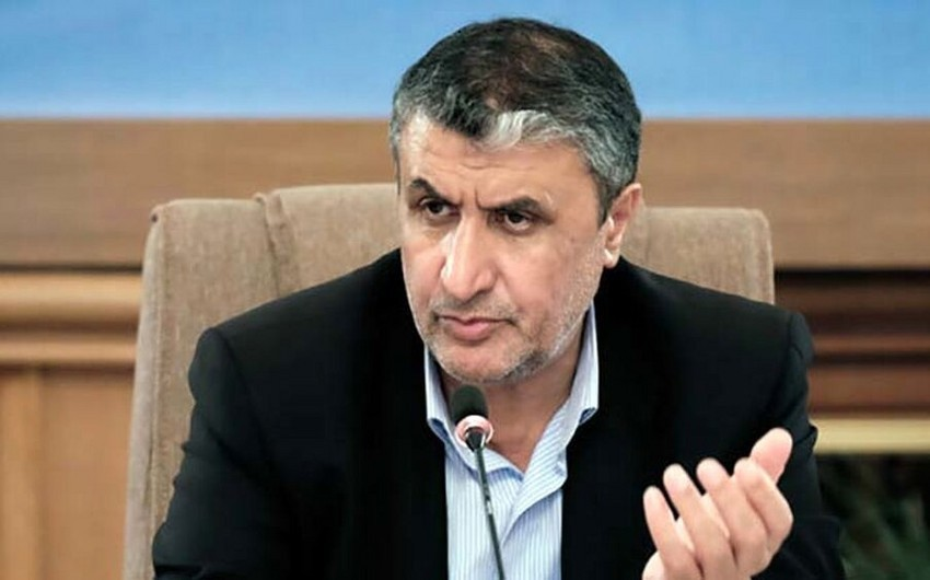 New head appointed to Atomic Energy Organization of Iran