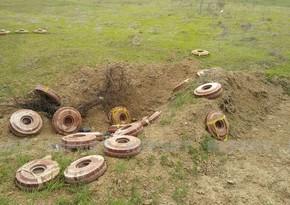 Ermənilərin basdırdığı bəzi minalar yağıntı nəticəsində torpağın üstünə çıxıb