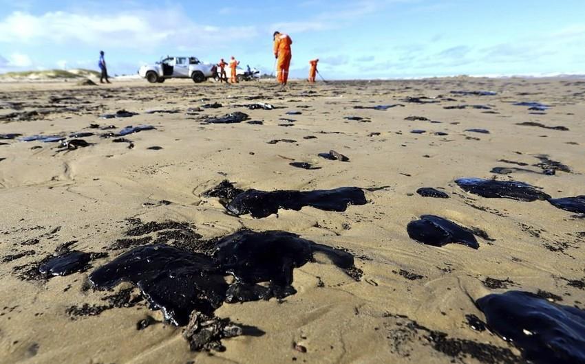 На пляжах Бразилии собрали более 500 т нефти
