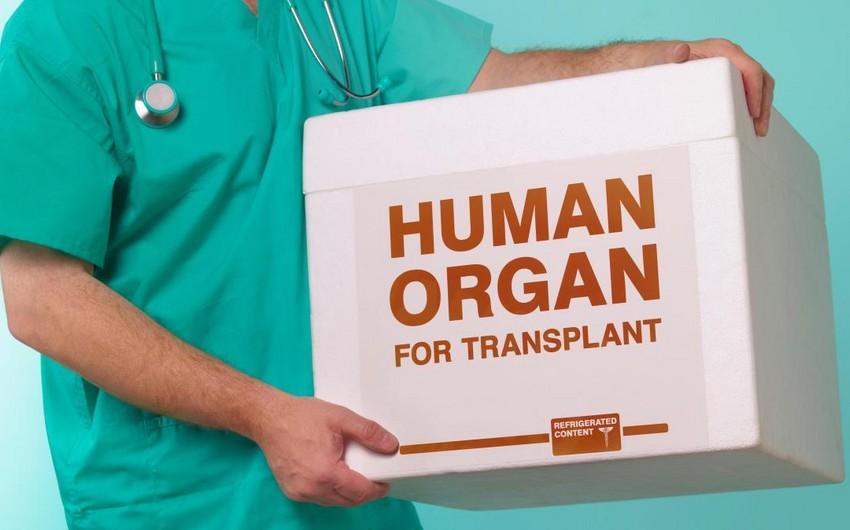 Azərbaycana xaricdən ölü donorun gətirilməsi mümkün olacaq
