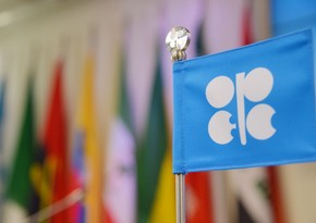 OPEC + Technical Committee meeting postponed to end of May