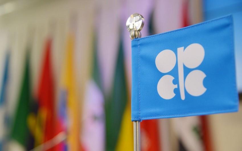 OPEC+ Texniki komitəsinin iclasının vaxtı açıqlandı