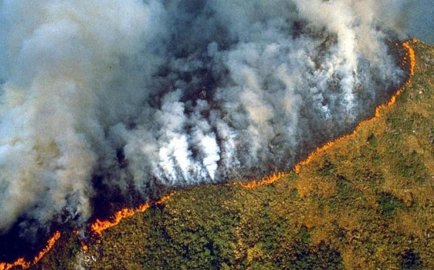 Braziliyada meşə yanğınlarını söndürmək üçün hərbçilər cəlb edilə bilər