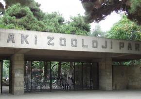 Bakı Zooloji parkında işlər yekunlaşır