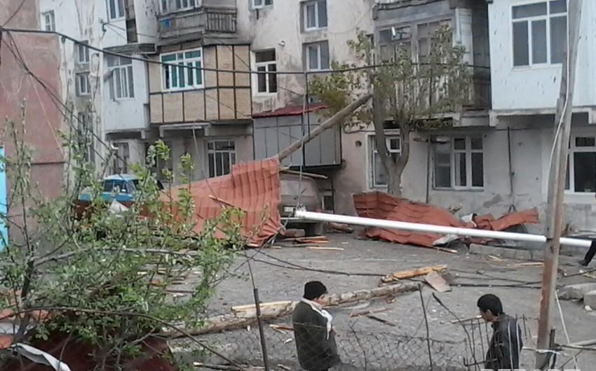 Daşkəsəndə güclü külək evlərin dam örtüyünü uçurub, elektrik xətlərini sıradan çıxarıb - FOTO