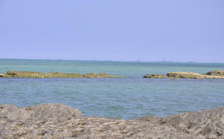 Nazirlik: Hazırda Xəzər dənizində kilkə balıqlarının ovuna icazə var