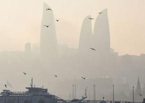 Пылевой туман продержится до конца недели