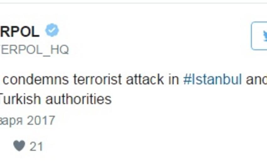 İnterpol Türkiyəyə terror aktının araşdırılmasında dəstəyini təklif edib
