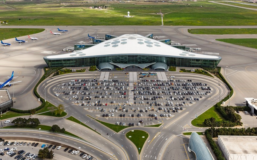 В бакинском аэропорту расследуют инцидент жестокого обращения с животными