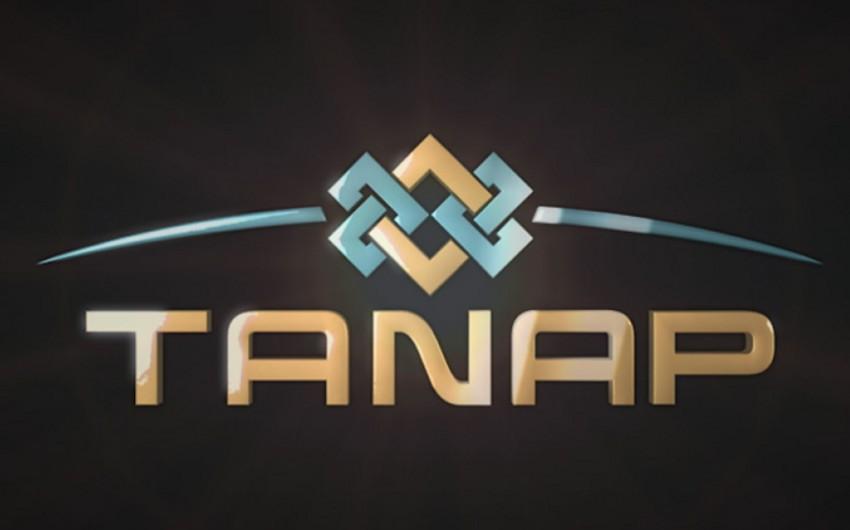 TANAP-ın 440 km hissəsində qaynaq işləri görülüb