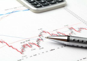 ARDNF-in investisiya portfelində beynəlxalq maliyyə təşkilatlarının payı artıb