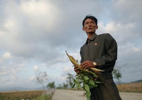 UN: Nearly half of North Koreans starving