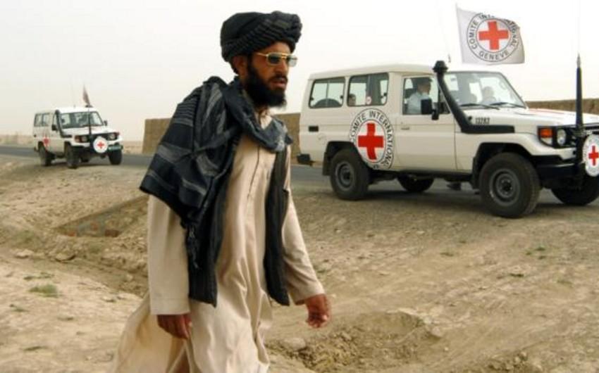 MKKK приостанавливает свою деятельность в Афганистане