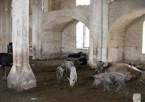 СМИ Молдовы написали о свиньях в Карабахских мечетях