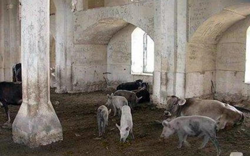 Moldova mediası Qarabağdakı məscidlərdə donuz saxlanılmasından yazıb