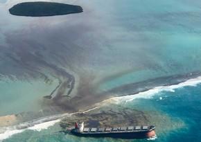 Oil spill in Mauritius kills rare animals
