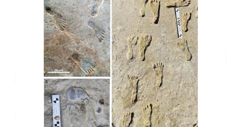 Amerika arxeoloqları: Ən qədim insan Şimali Amerikanın cənubunda yaşayıb