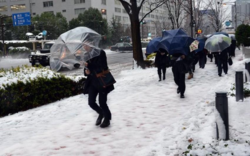 Heavy snowfall in Japan kills 15