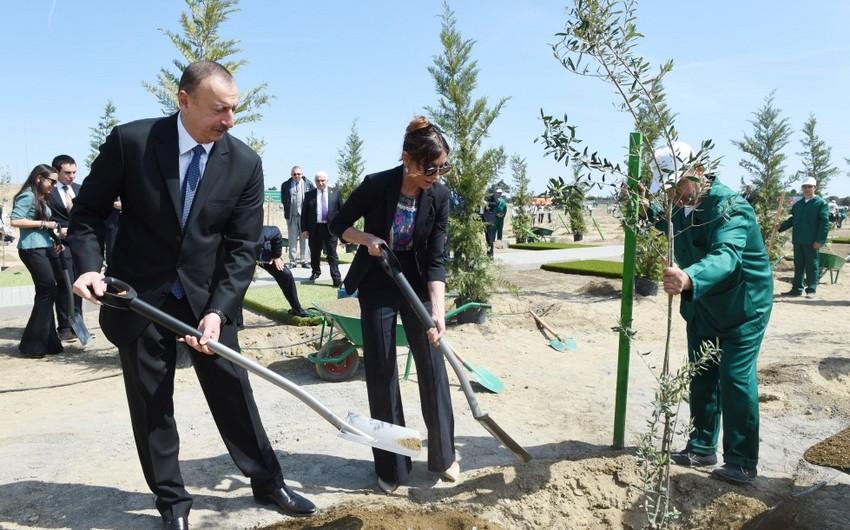 Президент Азербайджана принял участие в кампании по посадке деревьев, посвященной дню рождения общенационального лидера