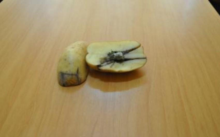Kartofun içərisində narkotik maddə keçirmək cəhdinin qarşısı alınıb - FOTO