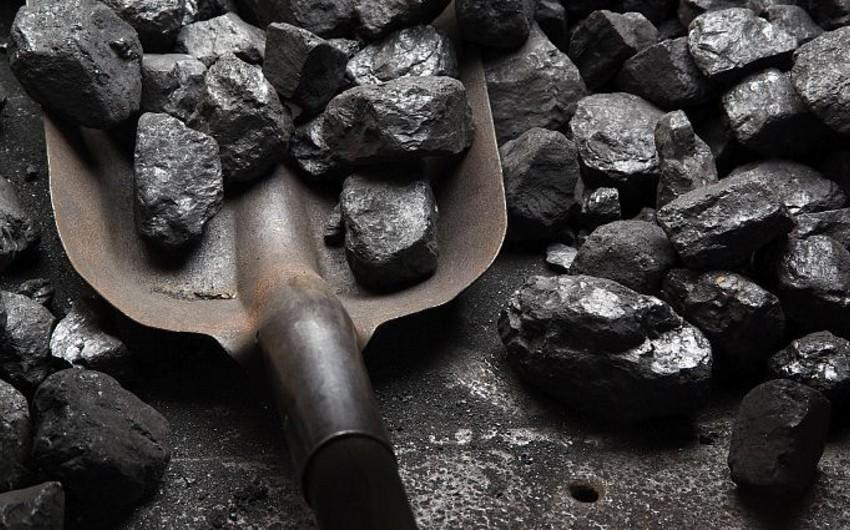 Kömürün qiyməti maksimal həddə çatıb
